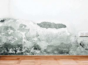 Cos'è l'umidità di risalita ascendente