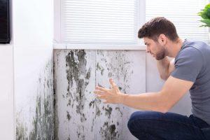 Motivi per non sottovalutare l'umidità